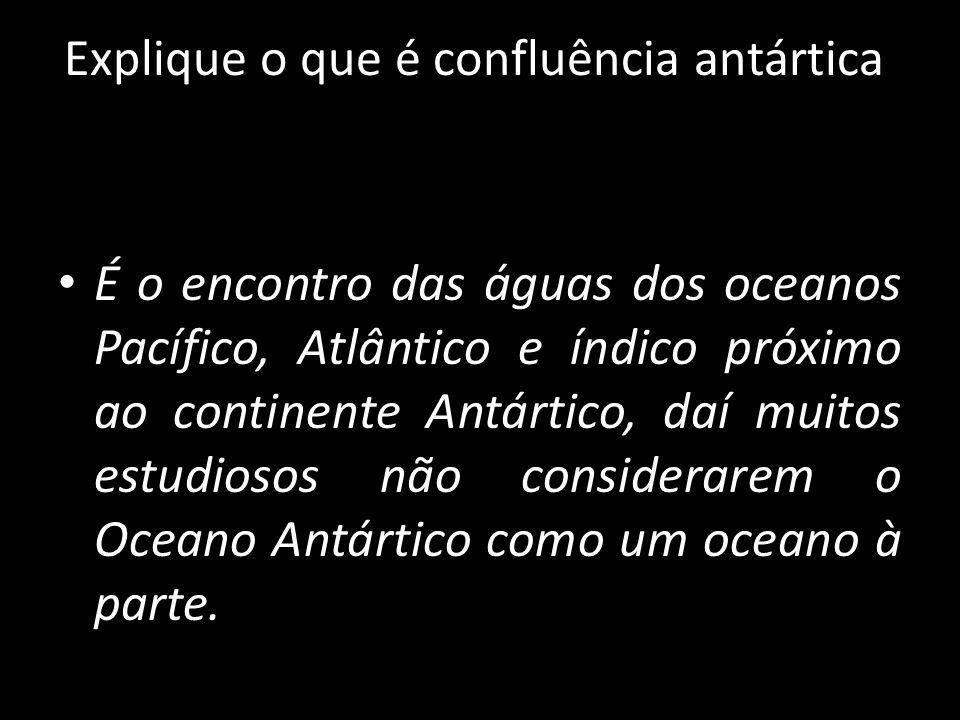 Explique o que é confluência antártica.