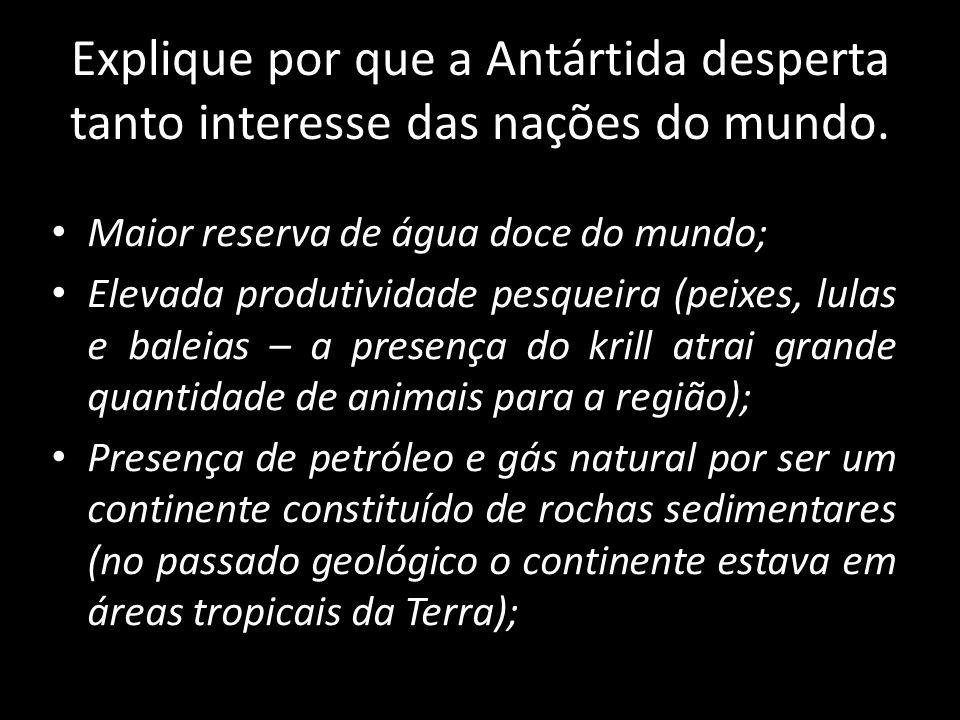 Explique por que a Antártida desperta tanto interesse das nações do mundo.