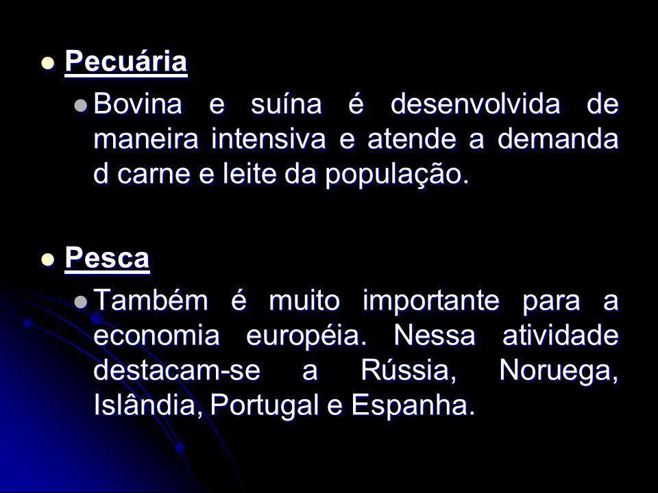Pecuária Bovina e suína é desenvolvida de maneira intensiva e atende a demanda d carne e leite da população.
