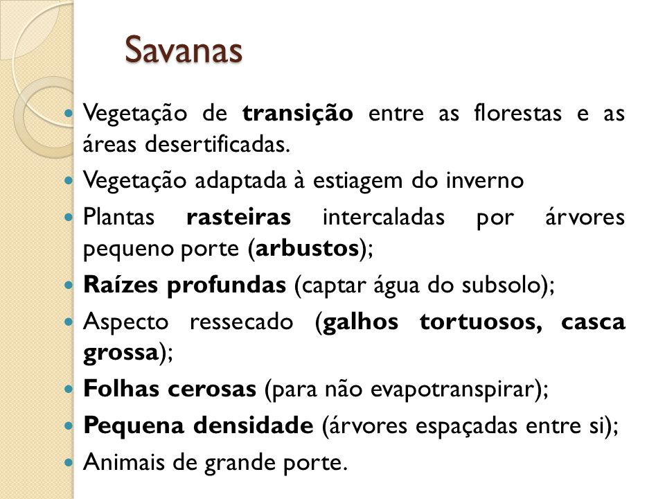 Savanas Vegetação de transição entre as florestas e as áreas desertificadas. Vegetação adaptada à estiagem do inverno.