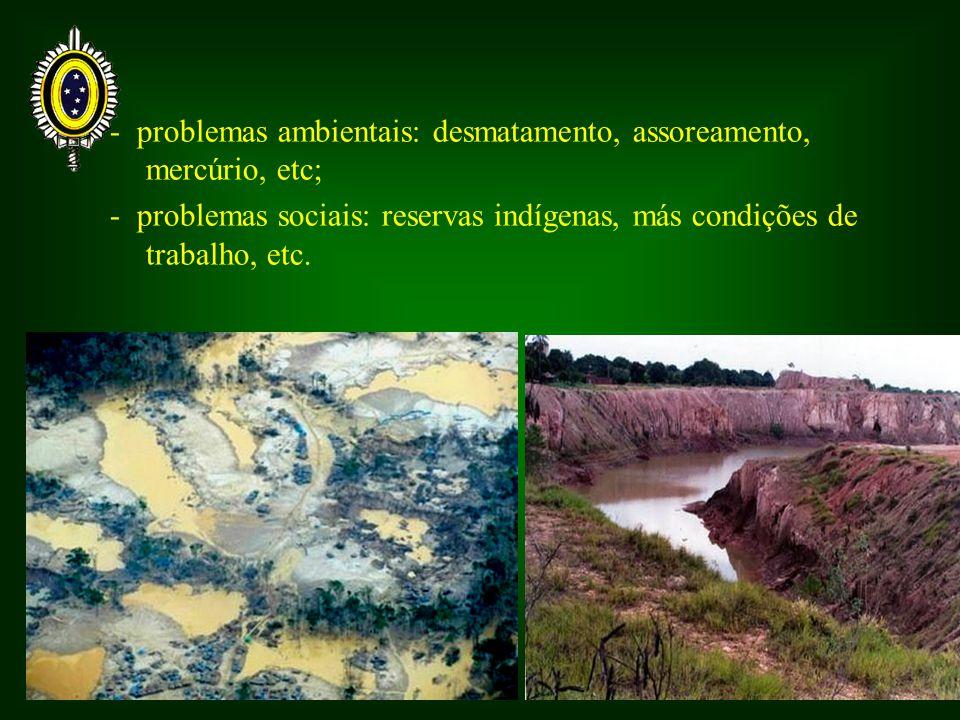 - problemas ambientais: desmatamento, assoreamento, mercúrio, etc;