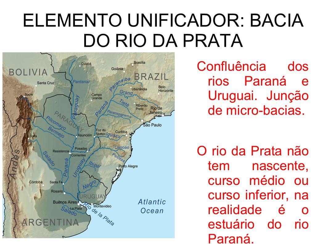 ELEMENTO UNIFICADOR: BACIA DO RIO DA PRATA