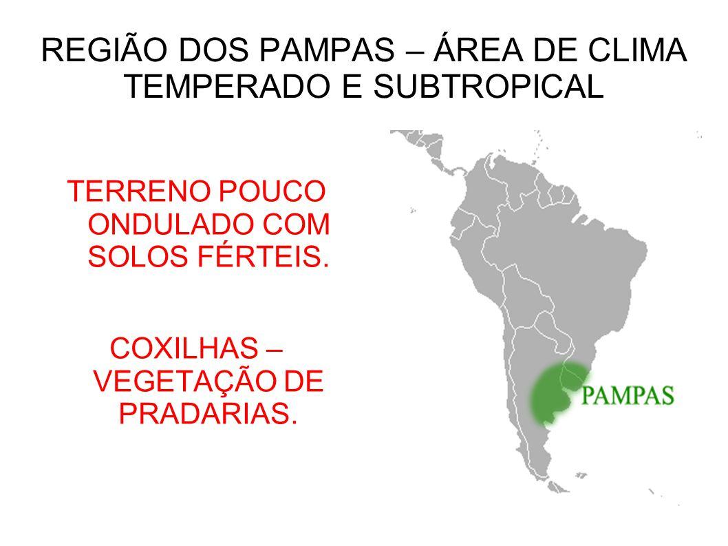REGIÃO DOS PAMPAS – ÁREA DE CLIMA TEMPERADO E SUBTROPICAL