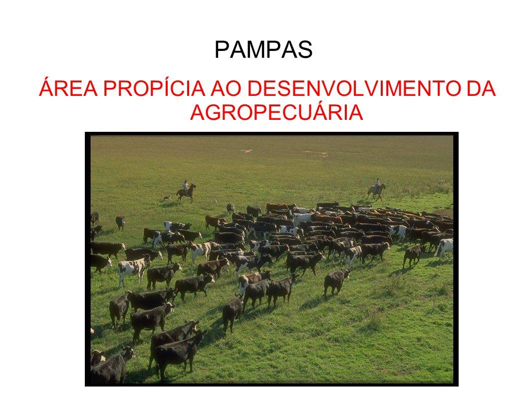 ÁREA PROPÍCIA AO DESENVOLVIMENTO DA AGROPECUÁRIA
