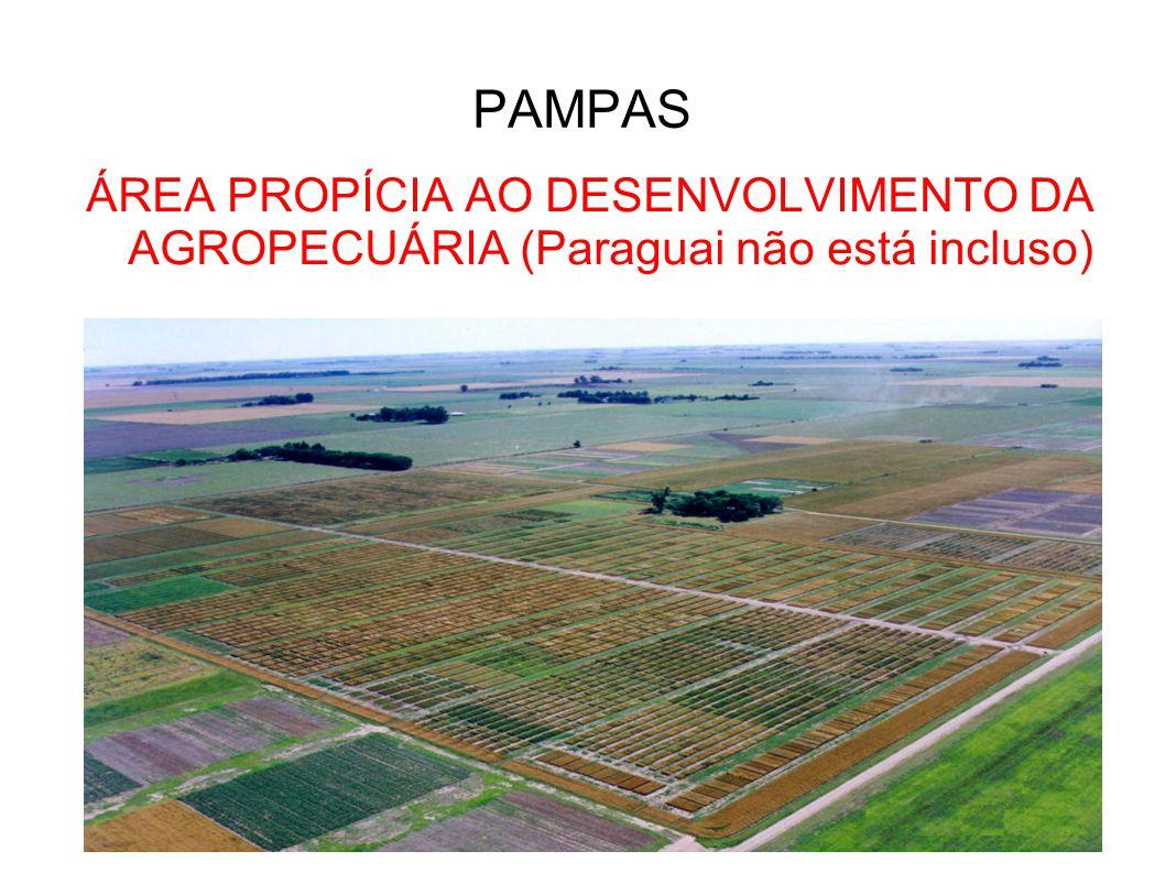 PAMPAS ÁREA PROPÍCIA AO DESENVOLVIMENTO DA AGROPECUÁRIA (Paraguai não está incluso)