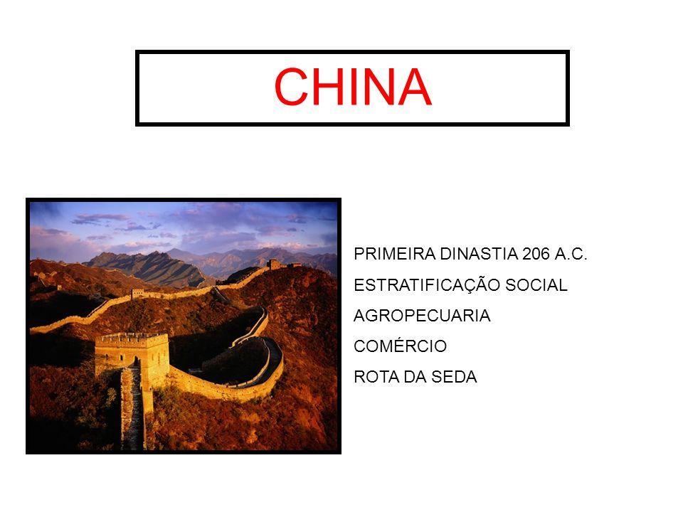 CHINA PRIMEIRA DINASTIA 206 A.C. ESTRATIFICAÇÃO SOCIAL AGROPECUARIA