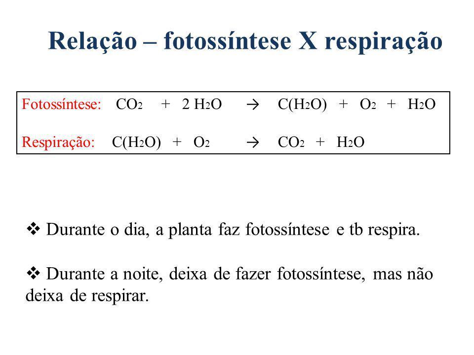 Relação – fotossíntese X respiração