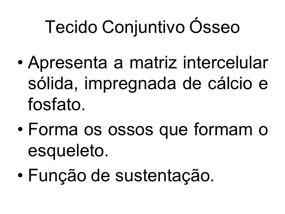 Tecido Conjuntivo Ósseo