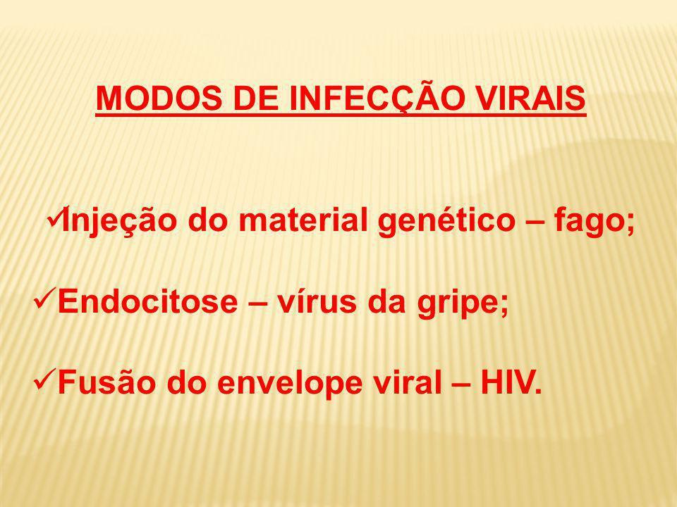 MODOS DE INFECÇÃO VIRAIS Injeção do material genético – fago;