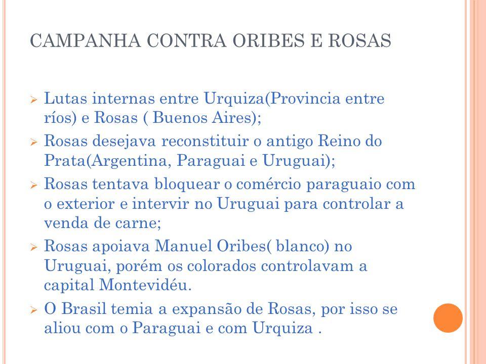 CAMPANHA CONTRA ORIBES E ROSAS