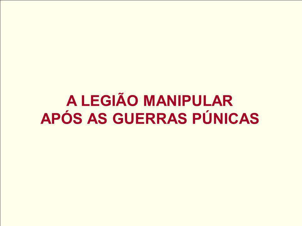 APÓS AS GUERRAS PÚNICAS