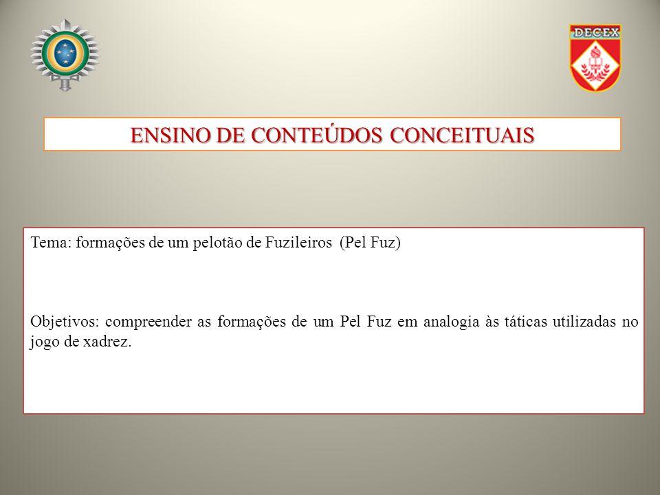 ENSINO DE CONTEÚDOS CONCEITUAIS