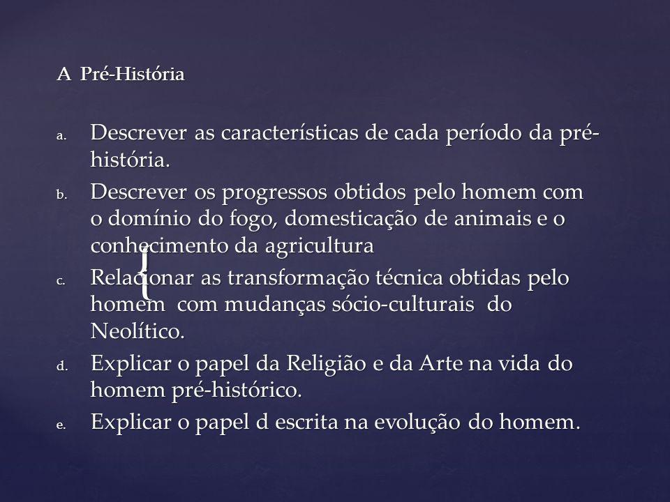 Descrever as características de cada período da pré-história.