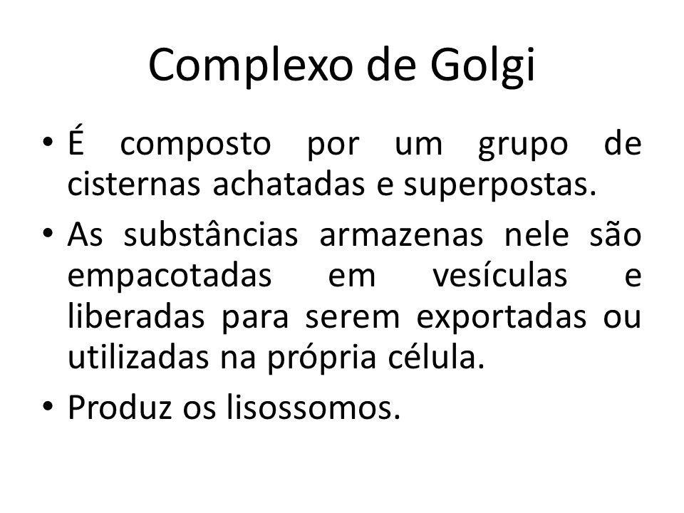 Complexo de Golgi É composto por um grupo de cisternas achatadas e superpostas.