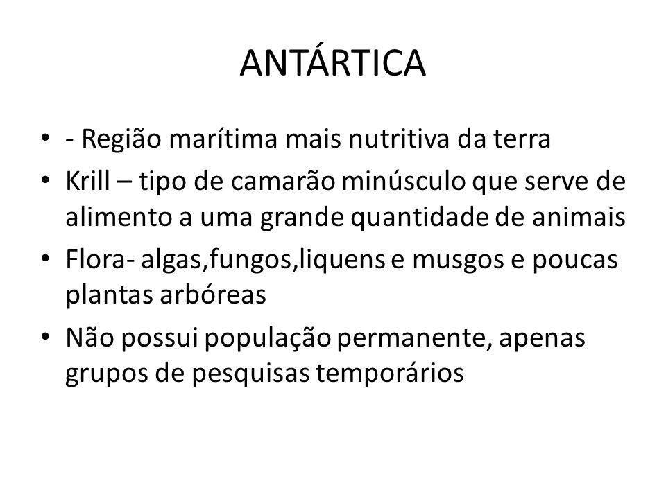ANTÁRTICA - Região marítima mais nutritiva da terra