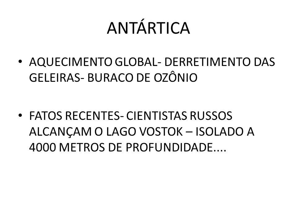 ANTÁRTICA AQUECIMENTO GLOBAL- DERRETIMENTO DAS GELEIRAS- BURACO DE OZÔNIO.