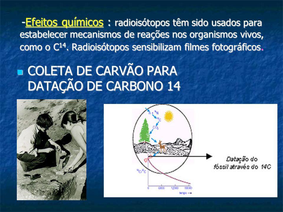 COLETA DE CARVÃO PARA DATAÇÃO DE CARBONO 14