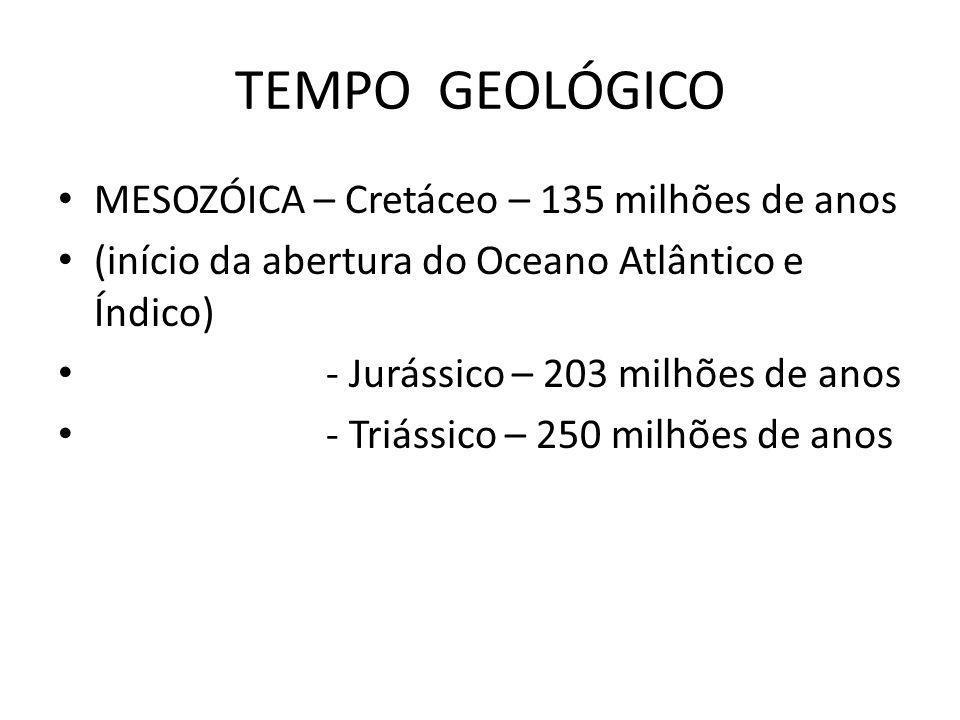 TEMPO GEOLÓGICO MESOZÓICA – Cretáceo – 135 milhões de anos