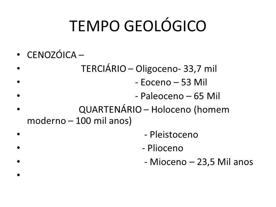 TEMPO GEOLÓGICO CENOZÓICA – TERCIÁRIO – Oligoceno- 33,7 mil