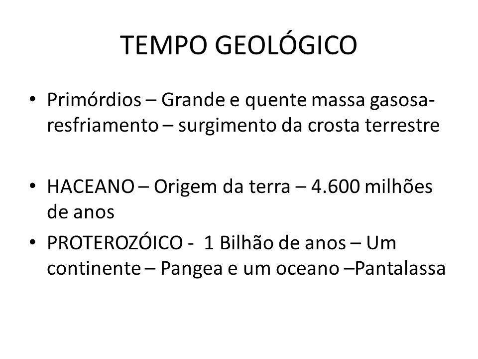 TEMPO GEOLÓGICO Primórdios – Grande e quente massa gasosa- resfriamento – surgimento da crosta terrestre.