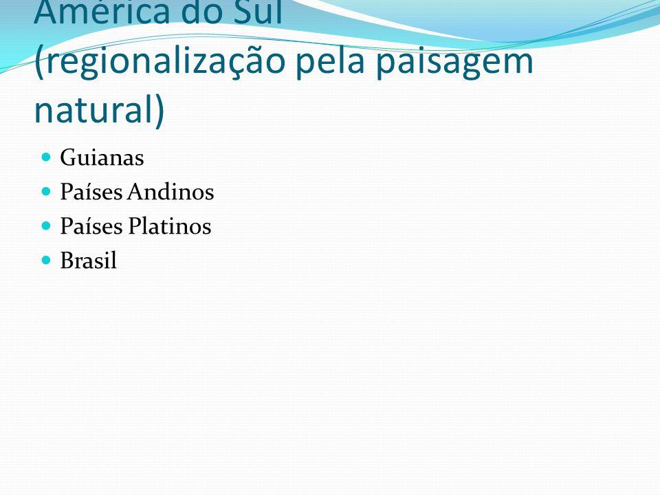 América do Sul (regionalização pela paisagem natural)