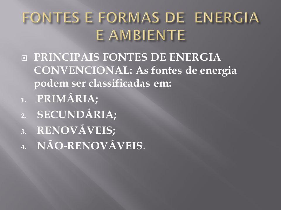FONTES E FORMAS DE ENERGIA E AMBIENTE