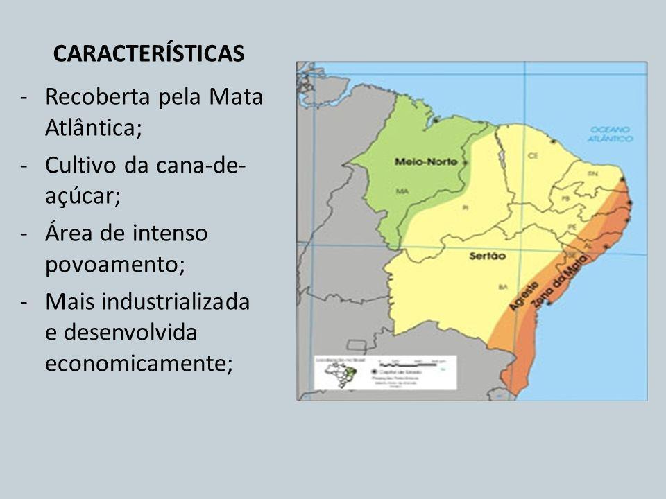 CARACTERÍSTICAS Recoberta pela Mata Atlântica; Cultivo da cana-de-açúcar; Área de intenso povoamento;