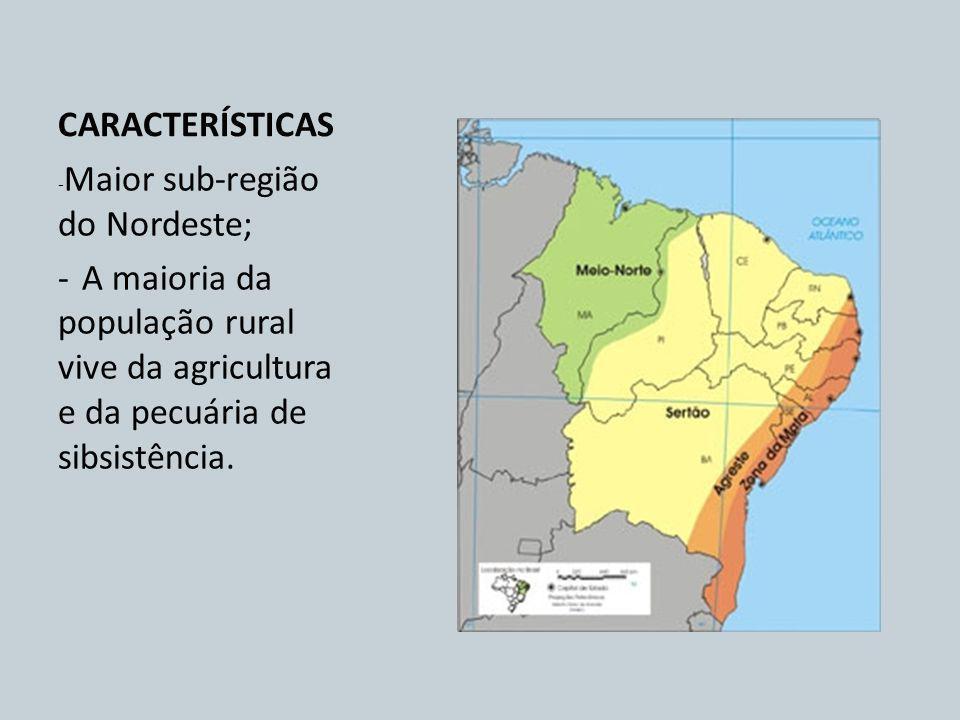 CARACTERÍSTICAS -Maior sub-região do Nordeste; - A maioria da população rural vive da agricultura e da pecuária de sibsistência.