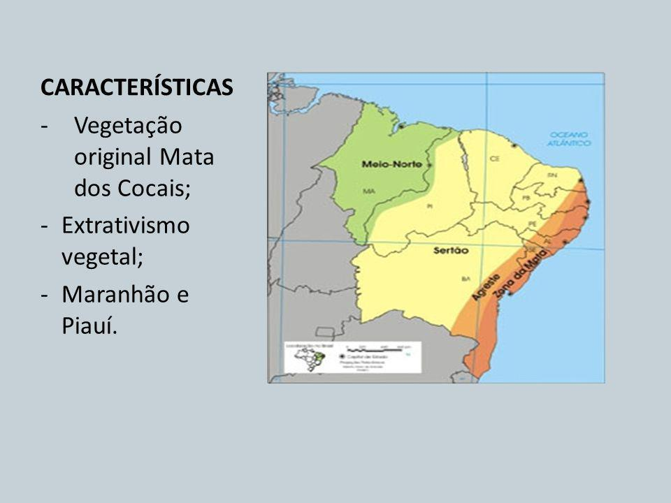 CARACTERÍSTICAS Vegetação original Mata dos Cocais; Extrativismo vegetal; Maranhão e Piauí.