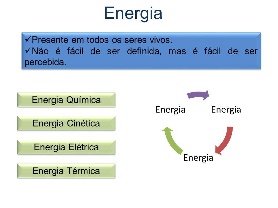 Energia Presente em todos os seres vivos.