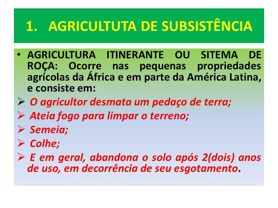 AGRICULTUTA DE SUBSISTÊNCIA