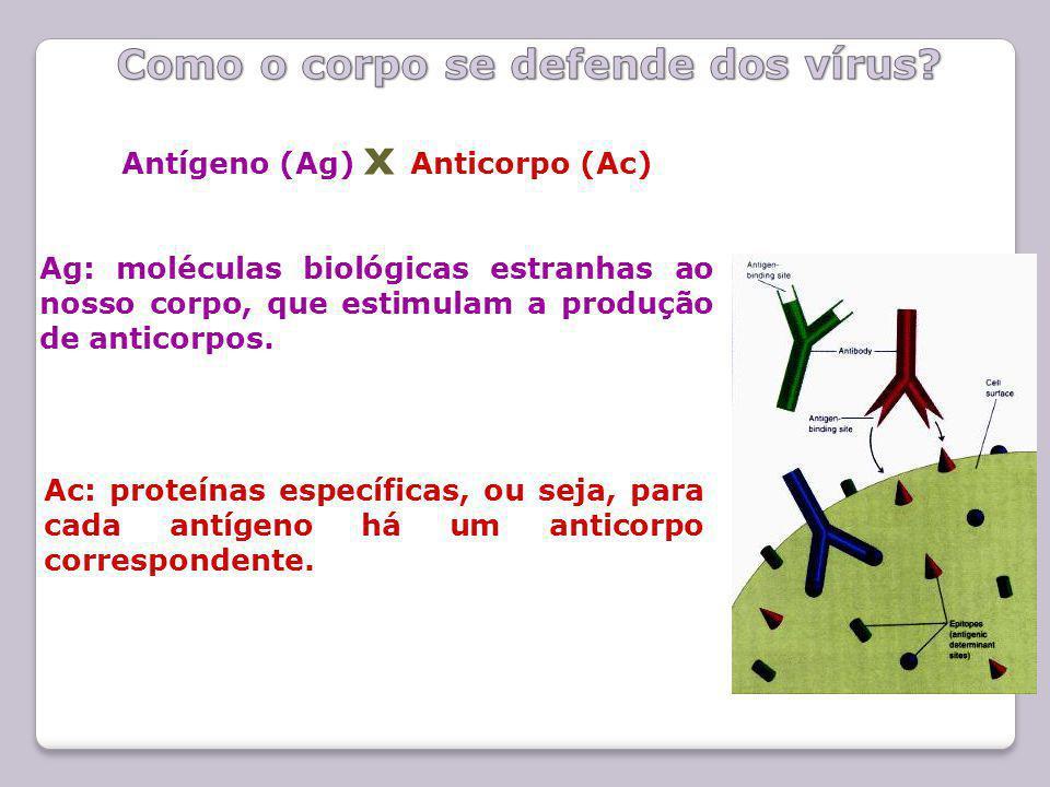 Como o corpo se defende dos vírus
