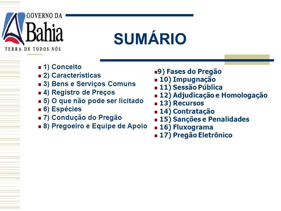 SUMÁRIO 1) Conceito 2) Características 3) Bens e Serviços Comuns