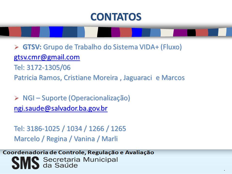 CONTATOS GTSV: Grupo de Trabalho do Sistema VIDA+ (Fluxo)