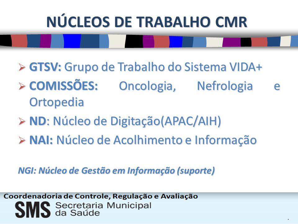 NÚCLEOS DE TRABALHO CMR