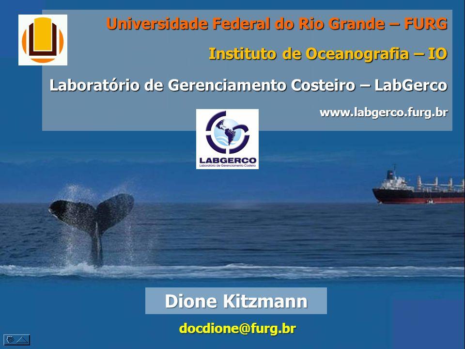 Dione Kitzmann Universidade Federal do Rio Grande – FURG