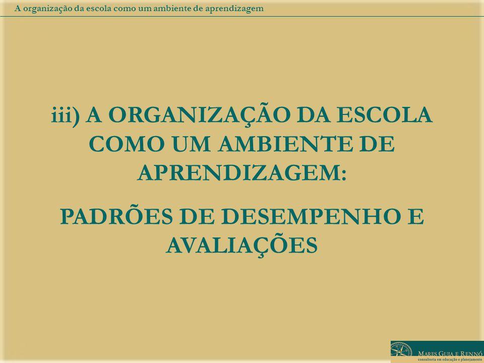 iii) A ORGANIZAÇÃO DA ESCOLA COMO UM AMBIENTE DE APRENDIZAGEM: