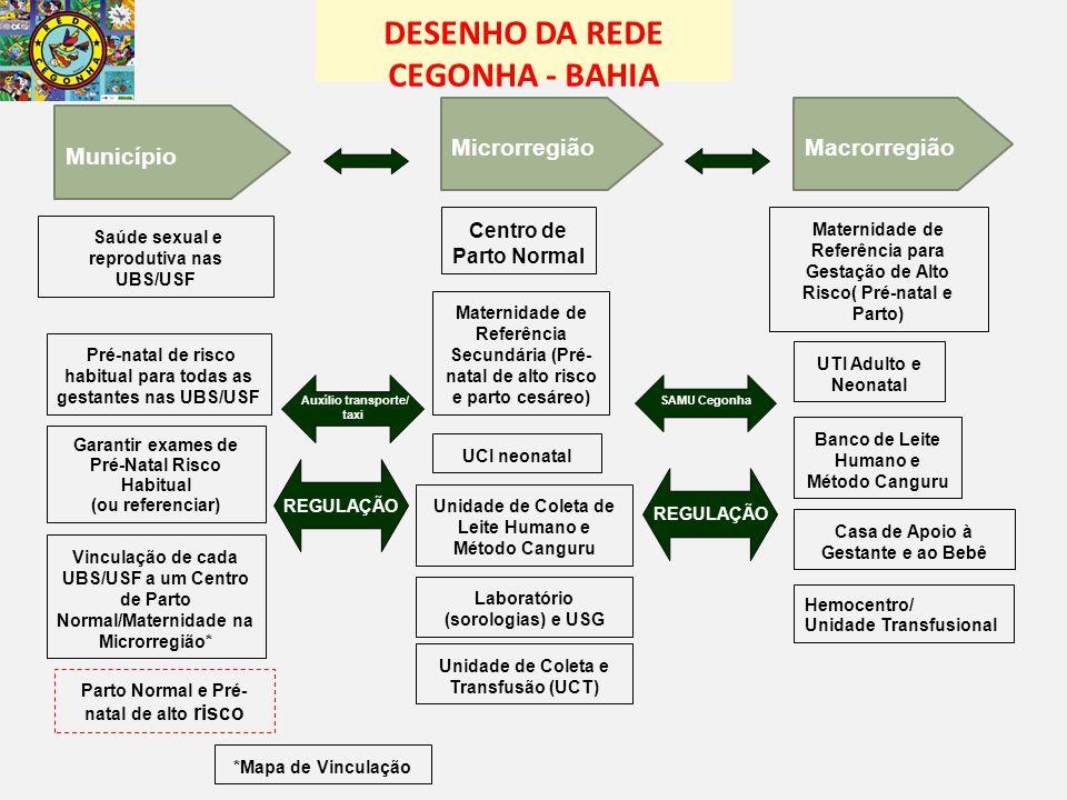 DESENHO DA REDE CEGONHA - BAHIA