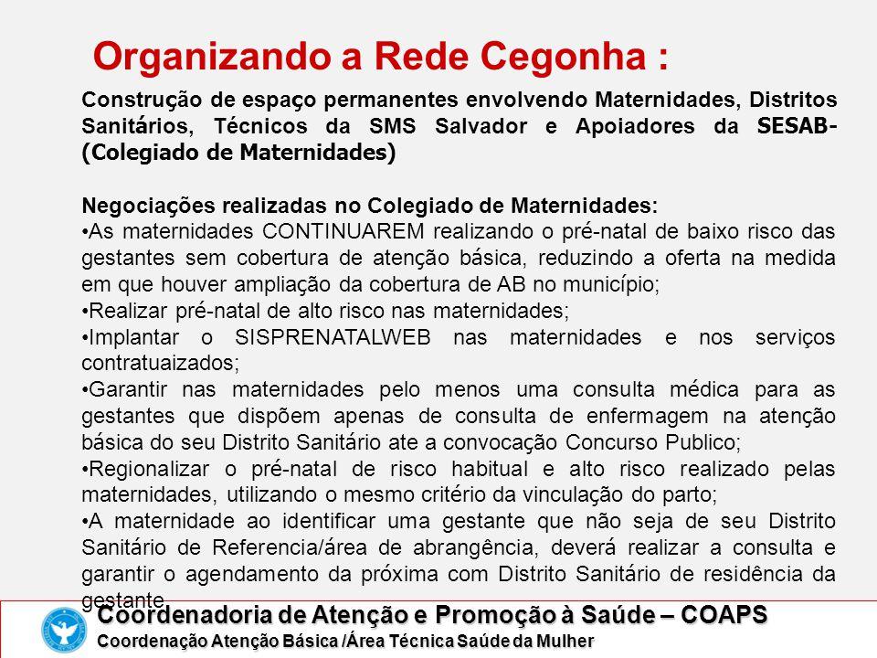 Organizando a Rede Cegonha :