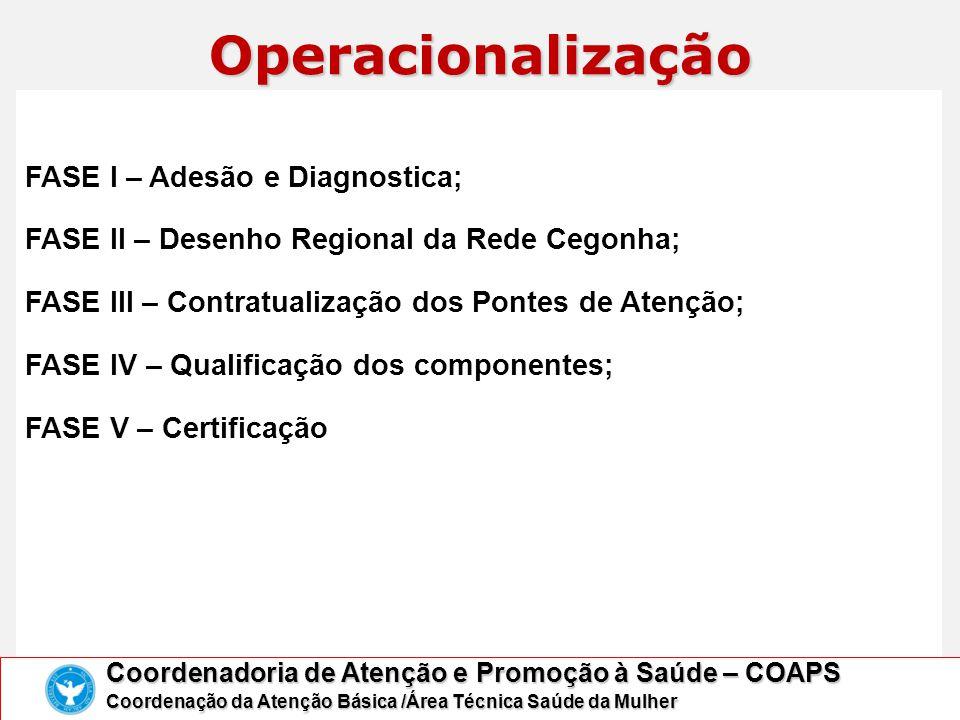 Operacionalização FASE I – Adesão e Diagnostica;