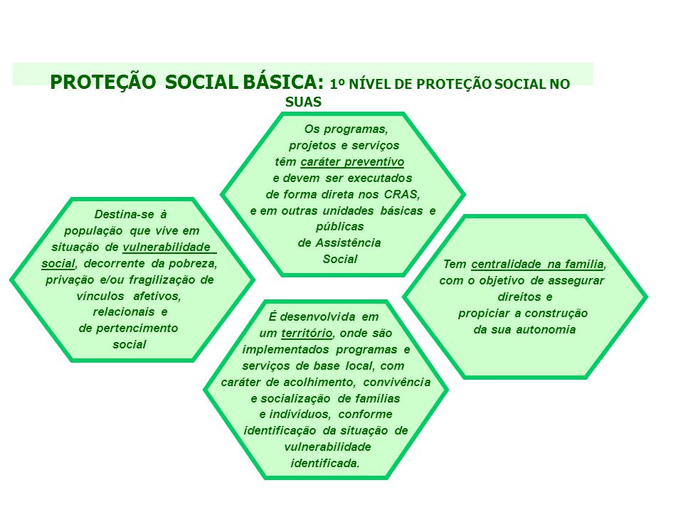PROTEÇÃO SOCIAL BÁSICA: 1º NÍVEL DE PROTEÇÃO SOCIAL NO SUAS