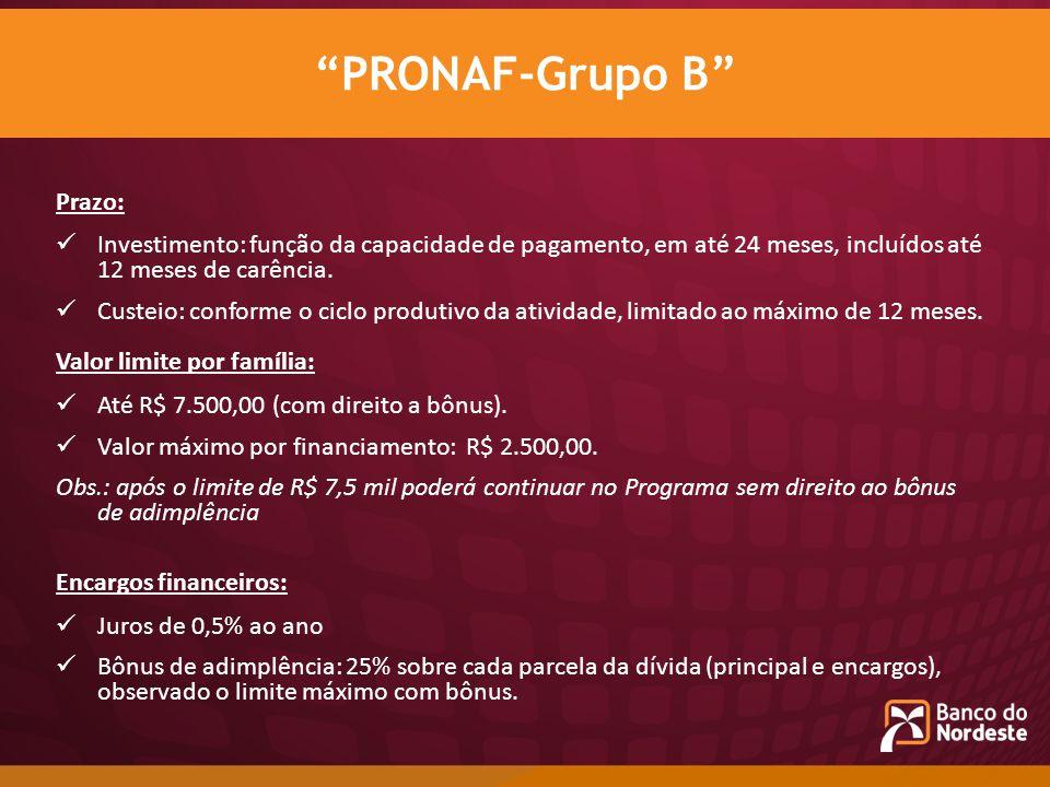 PRONAF-Grupo B Prazo: