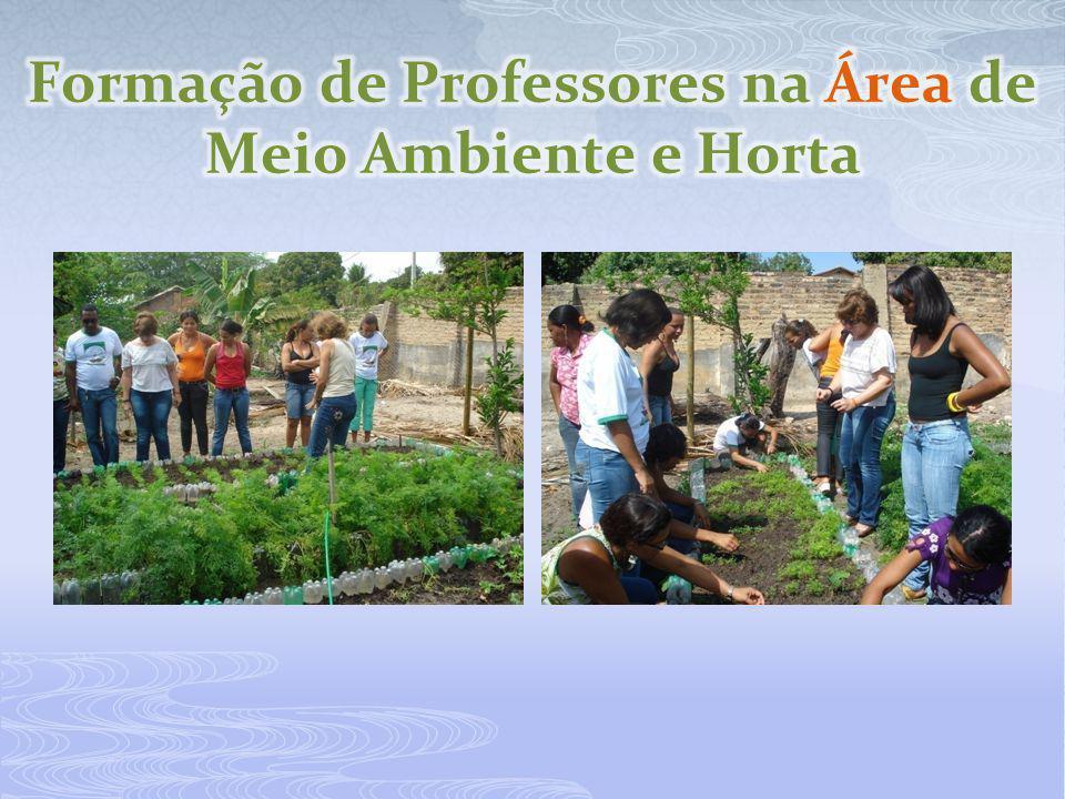 Formação de Professores na Área de Meio Ambiente e Horta