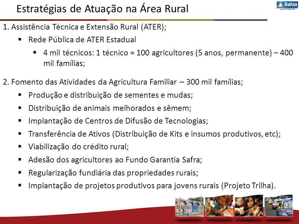 Estratégias de Atuação na Área Rural