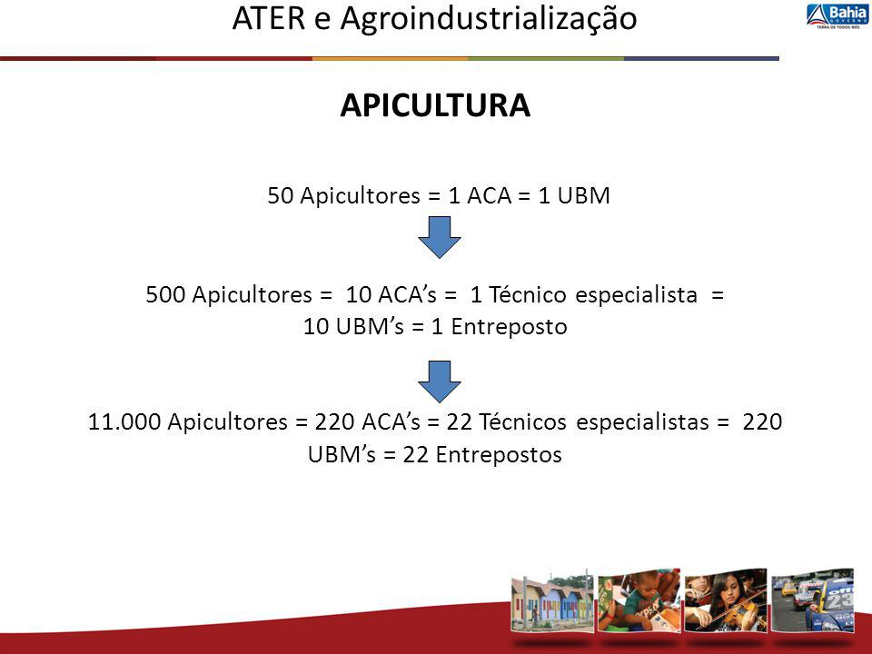 ATER e Agroindustrialização APICULTURA 50 Apicultores = 1 ACA = 1 UBM 500 Apicultores = 10 ACA's = 1 Técnico especialista = 10 UBM's = 1 Entreposto 11.000 Apicultores = 220 ACA's = 22 Técnicos especialistas = 220 UBM's = 22 Entrepostos