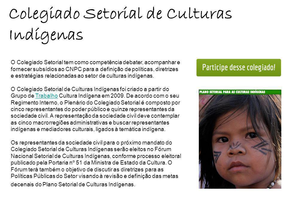 Colegiado Setorial de Culturas Indígenas