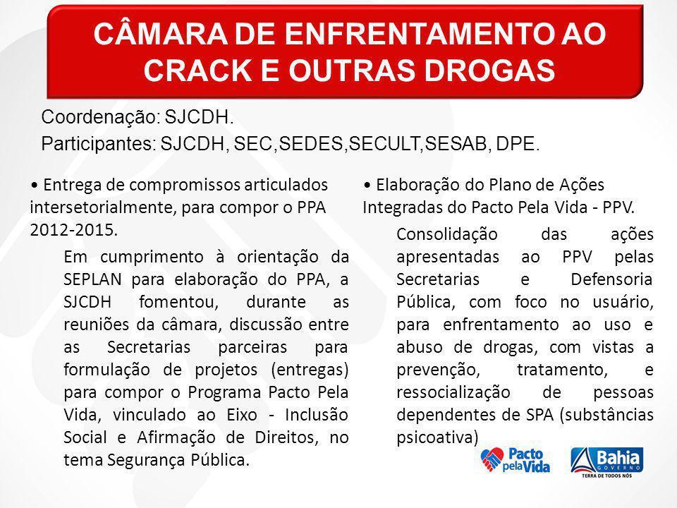 CÂMARA DE ENFRENTAMENTO AO CRACK E OUTRAS DROGAS