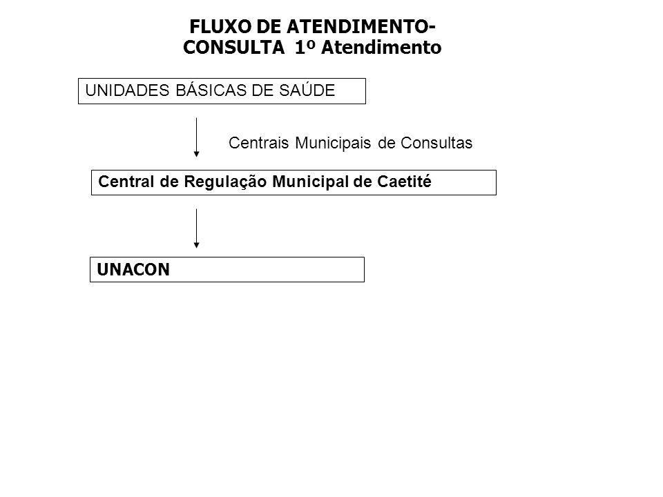FLUXO DE ATENDIMENTO- CONSULTA 1º Atendimento