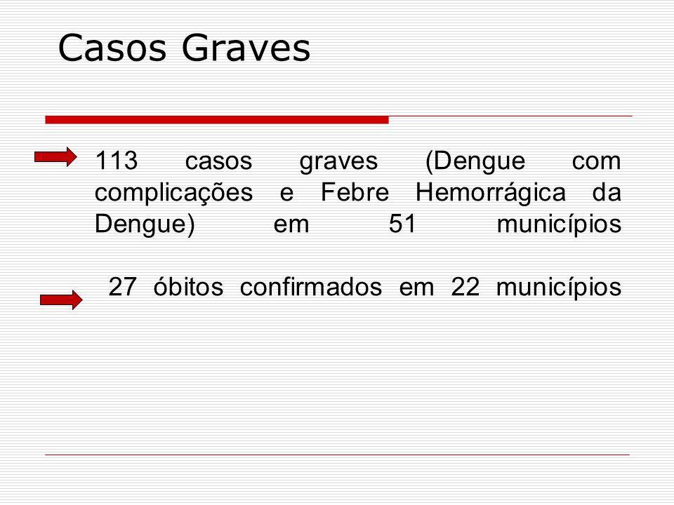 Casos Graves 113 casos graves (Dengue com complicações e Febre Hemorrágica da Dengue) em 51 municípios 27 óbitos confirmados em 22 municípios.