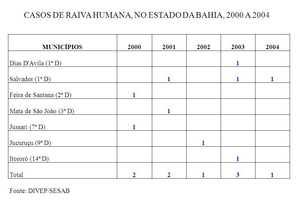 CASOS DE RAIVA HUMANA, NO ESTADO DA BAHIA, 2000 A 2004